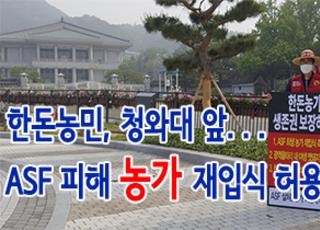 """[홍 기자의 FoodToday] 한돈농민, 청와대 앞으로...""""ASF 희생농가 재입식 허용"""""""