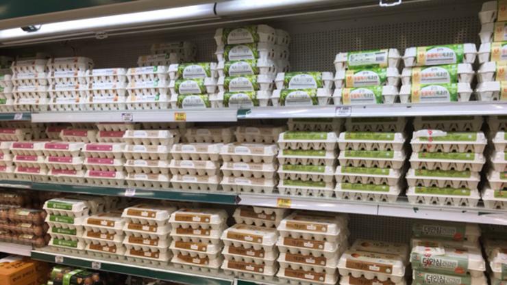생활필수품 22개 품목 가격 껑충...달걀 70.6.두부 16.5 올라