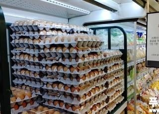 [2021국감] 정부 계란 수입으로 국민혈세 천억 낭비