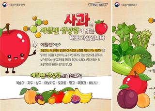 사과, 왜 다른 과일과 함께 보관하면 안 될까요?